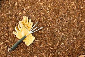 Garden mulch helps plants stay healthy