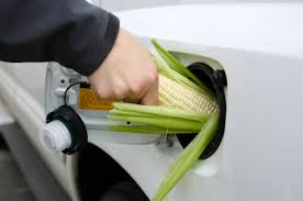 biofuel technology
